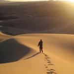 Peregrinar no deserto