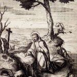 A Inculturação e São Francisco Xavier