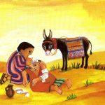 Pastoral Social